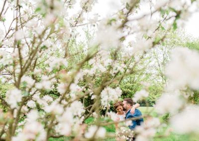 bride and groom cuddle amongst blossom trees