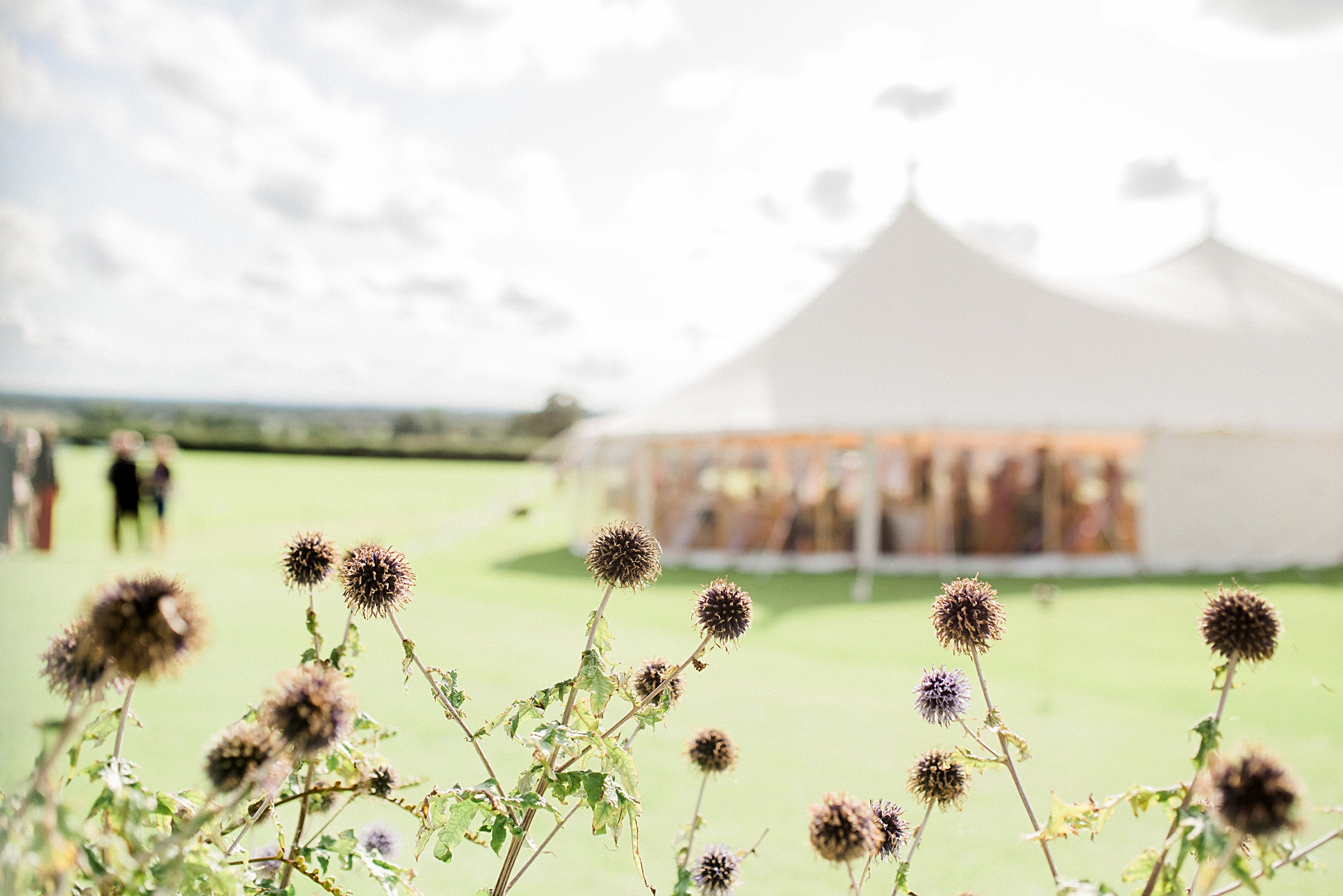 wills marquees tent at crayke village hall