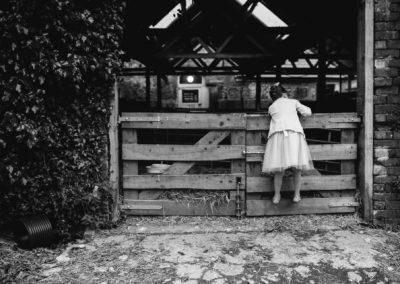 little girl climbs fence at farm wedding