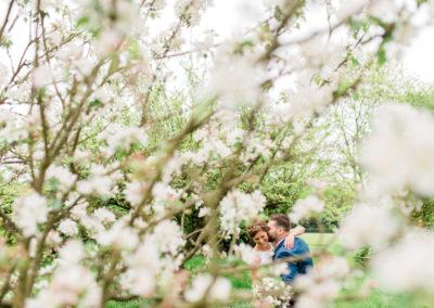 bride and groom cuddle amongst blossom trees