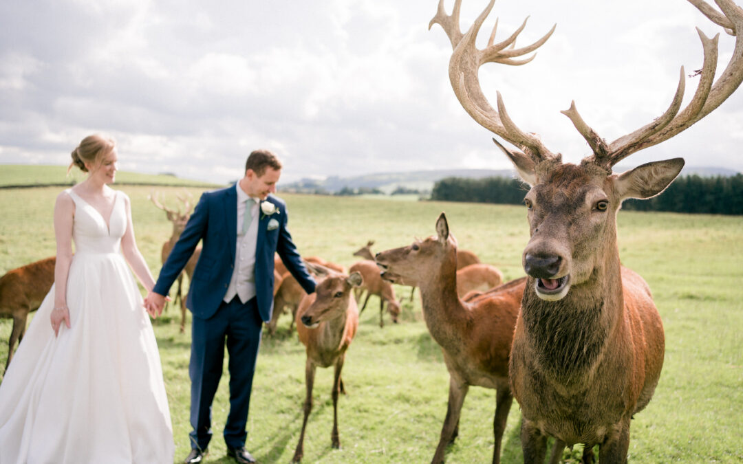 A Wedding at Thornton Hall Country Park